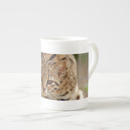 geoffroy-cat-020 taza de porcelana