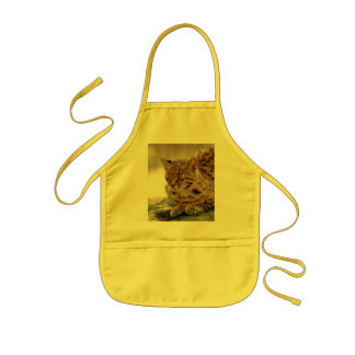 geoffroy-cat-023 apron