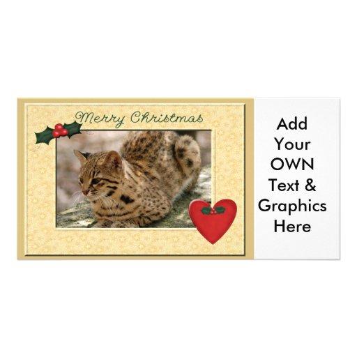 Geoffroy Cat-c-149 copy Photo Cards
