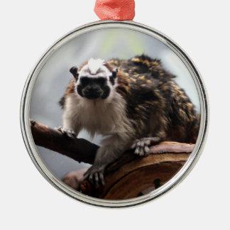 Geoffroy's Tamarin Ornament