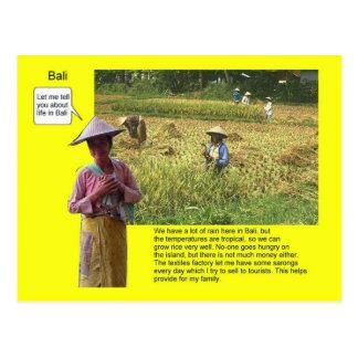 Geografía, estudios sociales, vida en Bali Tarjetas Postales
