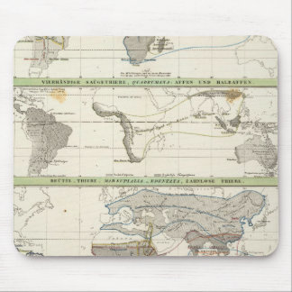 Geographical Distribution Mouse Pad