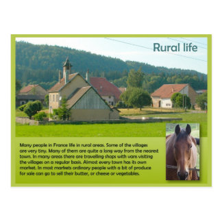 Geography, Social studies, French rural life Postcard