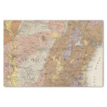 """Geological Map of New Hampshire 4 10"""" X 15"""" Tissue Paper"""
