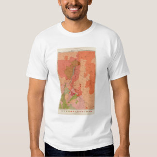 Geological Map of the Washoe District T-Shirt