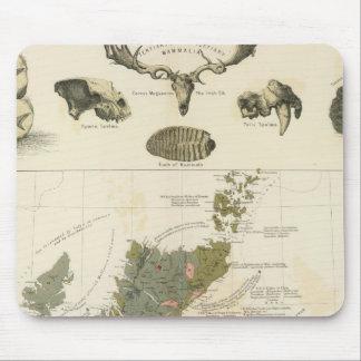 Geological, palaeontological map British Islands Mouse Pad