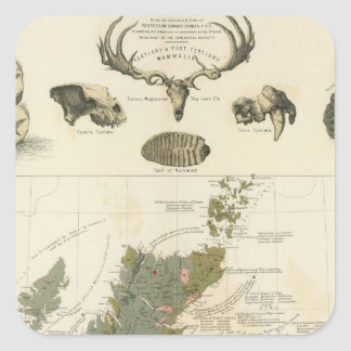 Geological, palaeontological map British Islands Square Sticker