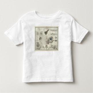 Geological phenomena toddler t-shirt