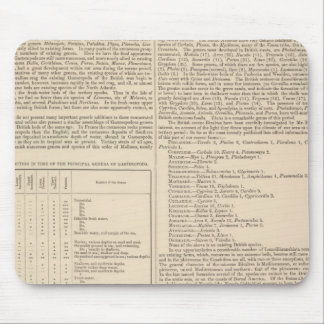 Geology and Paleontology of the British Isles Mouse Pad