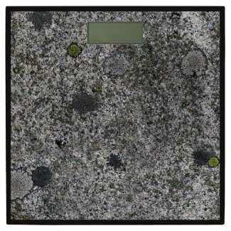 Geology Grey Granite Rock with Moss