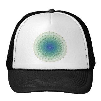 Geometrical Uniform Polytope in E8 Coxeter Plane Mesh Hats