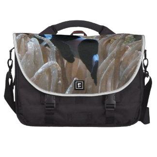 geordie clownfish laptop messenger bag