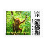 George B, Orangutan Baby Postage Stamp