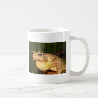 george bufo the frog coffee mug