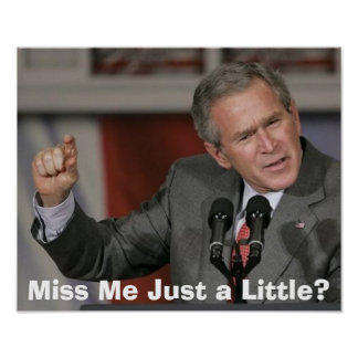 George Bush/Miss Me Just a Little? Poster