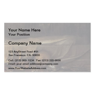 George Frederick Watts- Sic Transit Double-Sided Standard Business Cards (Pack Of 100)