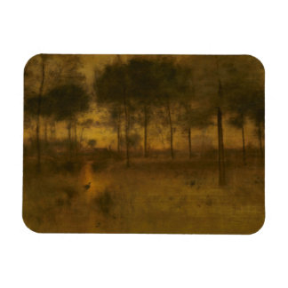 George Inness - The Home of the Heron Magnet