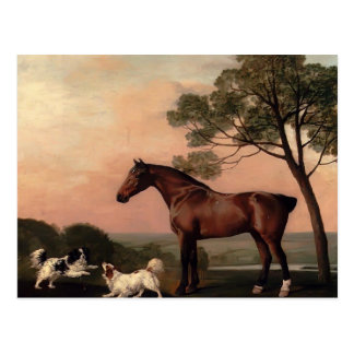 George Stubbs- A Bay Hunter With Two Spaniels Postcard
