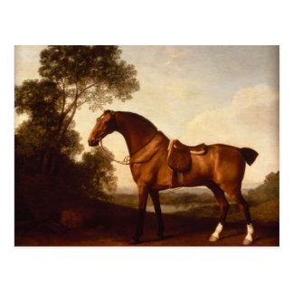 George Stubbs- A Saddled Bay Hunter Postcard