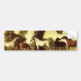 George Stubbs Bumper Sticker