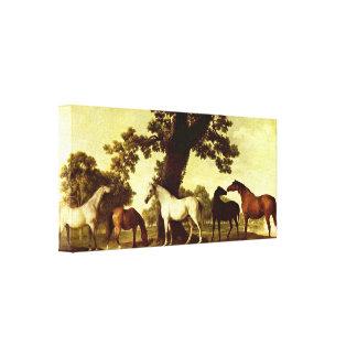George Stubbs - caballos en un paisaje Lienzo Envuelto Para Galerias