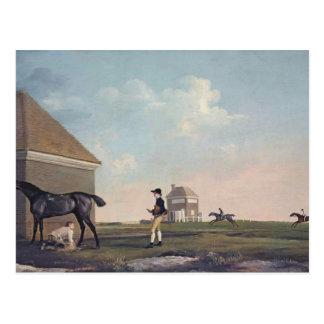 George Stubbs- Gimcrack on Newmarket Heath Postcard