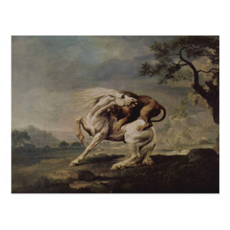 George Stubbs- Lion Attacking a Horse Postcard