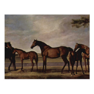 George Stubbs-Mares,foals before a looming storm Postcard