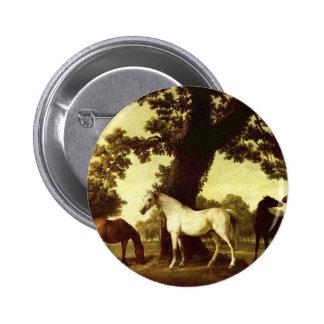 George Stubbs Pinback Button