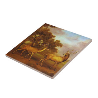 George Stubbs- Red Deer Stag and Hind Small Square Tile
