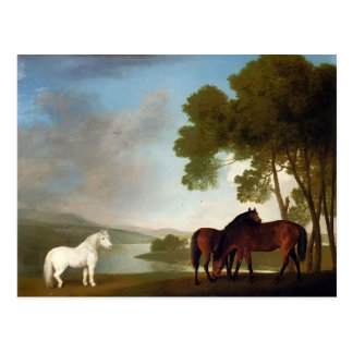 George Stubbs- Two Bay Mares And a Grey Pony Post Card