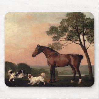 George Stubbs- un cazador de la bahía con dos perr Alfombrilla De Ratón