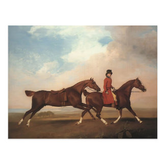 George Stubbs-William Anderson,two saddle-horses Postcard