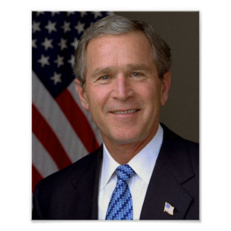 George W Bush Póster