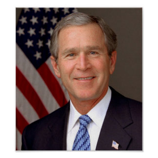 George W. Bush Póster