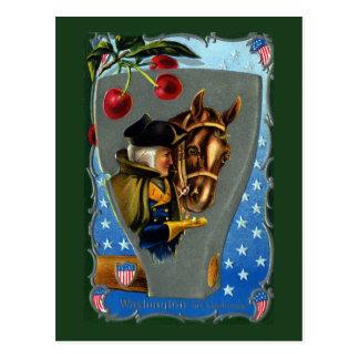 George Washington Feeding Horse Sugar Cube Postcard