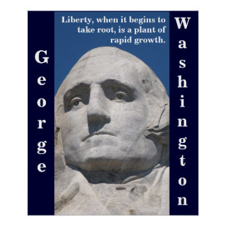 George Washington Liberty Poster