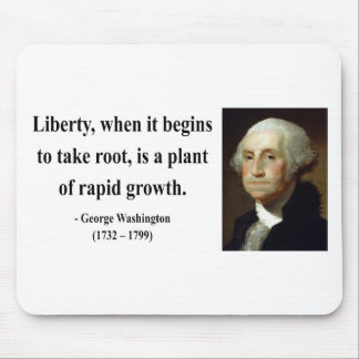 George Washington Quote 2b Mouse Pad