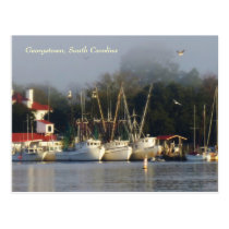 Georgetown Shrimp Boats Souvenir Postcard