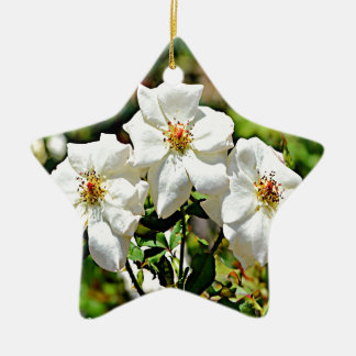 Georgia Cherokee Rose 2 Ceramic Ornament