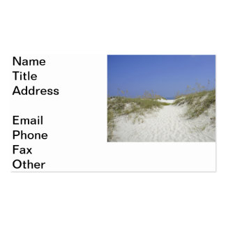 Georgia Dunes Double-Sided Standard Business Cards (Pack Of 100)