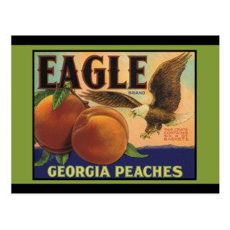 Georgia Eagle Peaches Post Cards