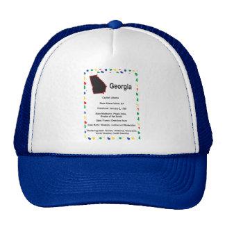 Georgia Information Educational Hat