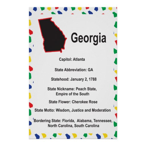 Georgia Information Educational Poster
