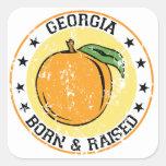 Georgia llevada y aumentada calcomanía cuadradase