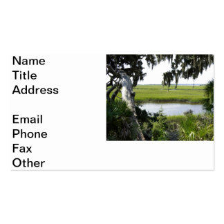 Georgia Marshland Double-Sided Standard Business Cards (Pack Of 100)