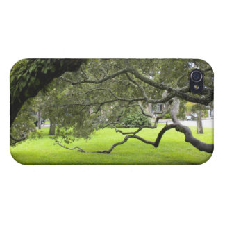 Georgia Oak iPhone 4/4S Covers