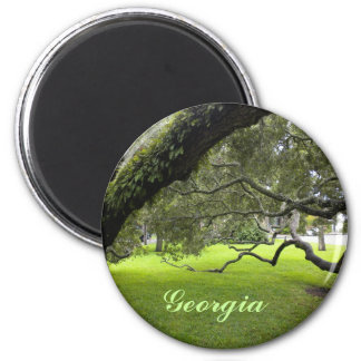 Georgia Oak Fridge Magnet