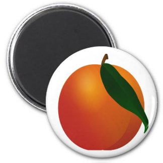 Georgia Peach / Apricot Fruit Magnet