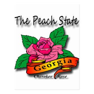 Georgia Peach State Cherokee Rose Postcard